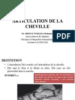 Articulation de La Cheville Pptx