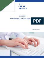 Informe Sobre Las Variantes P1 y P2