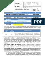 REG-TSS-002 Reglamento de Higiene y Seguridad Industrial ok