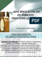 PRINCÍPIOS DO PROCESSO PENAL I 2020_1