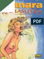 Kamasutra version comic