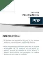 peletizacion proyect expo