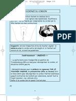 06_procidence_du_cordon