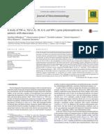 DEpression and Cytokine polymorphism