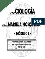 MOSQUEIRA - MODULO  1