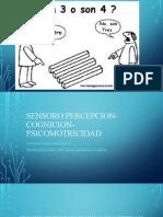 DESARROLLO SENSOROPERCEPTIVO (1)