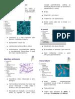 2° TBL- bacilus gram positivos, Clostridium, Listeria, Mycobacterium, Garnarella.docx