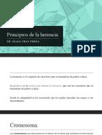2.Principios de La Herencia