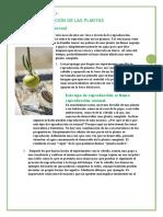 CS NT DESARROLLO DE LAS PLANTAS