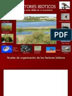Factres+Bióticos+para+enviar