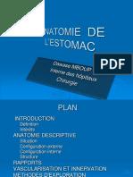 ANATOMIE DE L'ESTOMAC