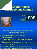 Свиноводство Rus