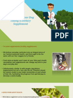 7 Benefits of Your Dog Taking Dietary Supplement