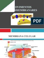 3.Movimentos_transmembranares