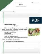 CLR Evaluare - text suport