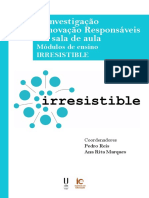 A IIR Responsaveis Modulos de Ensino IRRESISTIBLE-simples
