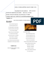 8º Queimadas e degradação do meio ambiente