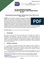 VI EPCC lucimeire_brenzan_zampar_souza