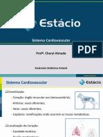 Aula 02_Sistema Cardiovascular