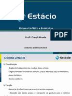 Aula 03_Sistema Linfático e Endócrino
