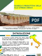Tarricone Fisiologica Della Vite Stress Idrico 11 Ottobre 2017