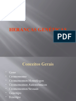 Aula 2.1 - Herancas Geneticas