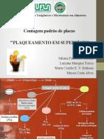 Métodos de isolamento de fungos contaminantes de alimentos