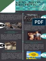 9 mitos de la estética (1)