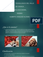 Anemia Fisiologia Animal