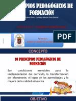 Principios Pedagógicos de La Formacion