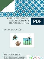Introducción al Metabolismo y Bioenergética.