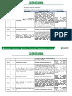 CRONOGRAMA 2020 - Seminario Problemas Jurídicos