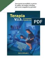 Terapia VIS Si o Imersiune in Sufletul Mamelor Si Copiilor - Extrase Din Carte - Gabriel Margarit