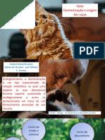 Domesticação dos gatos