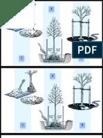 Planting a Tree Revised Pocket Version PDF