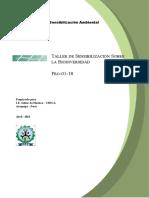 376615218 Plan de Sensibilizacion Docx