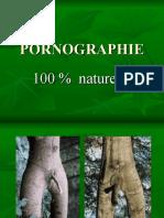 Όταν πορνογραφεί η φύση
