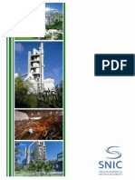 Industria do Cimento no Cenario das Mudancas Climaticas