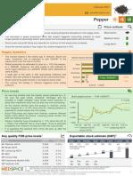 Nedspice Spices Market Update Feb 2021