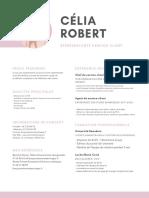 Cendre Rose Lines Service Client CV