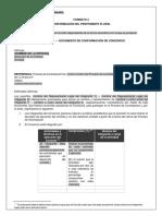 FORTMATO CONFORMACIÓN PROPONENTE PLURAL UNIÓN TEMPORAL