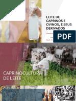 Seminario de Leite e Derivados de Caprino e Ovino - Lara e Guilherme