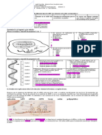 2020 TALLER #5  TRANSCRIPCIÓN  DEL ARN.pdf