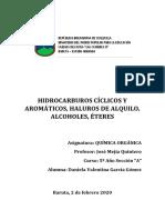 HIDROCARBUROS CÍCLICOS Y AROMÁTICOS, HALUROS DE ALQUILO, ALCOHOLES, ÉTERES