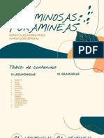 album gramineas y leguminosas