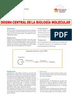 Lectura-5-Dogma-Central-de-la-Biologia-Molecular