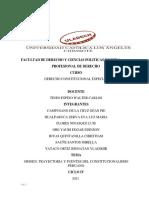 DERECHO CONSTITUCIONAL ESPECIAL