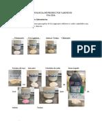 Guía de laboratorio Aditivo Alimentarios y Equipos