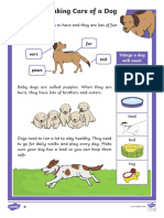 t t 2546651 Ks1 How to Look After a Dog Differentiated Reading Comprehension Activity