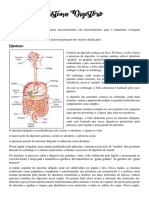 Sistema Digestório resumo completo